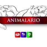 ANIMALARIO  LA ESCUELA DONDE CONOCERÁS A LAS BESTIAS QUE HABITARON EL PLANETA