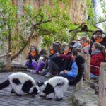 Bioparc Valencia: Expedición África Navidad de BIOPARC Valencia abre el plazo de inscripción